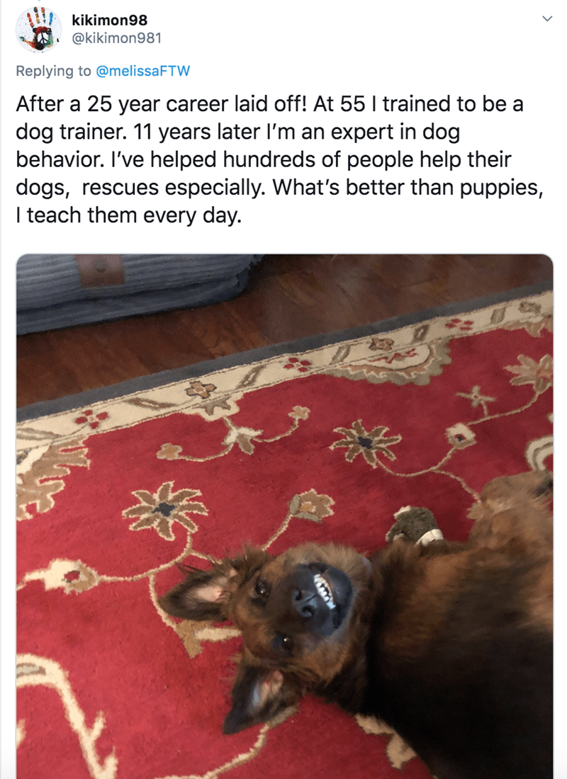 Canidae - kikimon98 @kikimon981 Replying to @melissaFTW After a 25 year career laid off! At 55 I trained to be a dog trainer. 11 years later l'm an expert in dog behavior. I've helped hundreds of people help their dogs, rescues especially. What's better than puppies, I teach them every day.