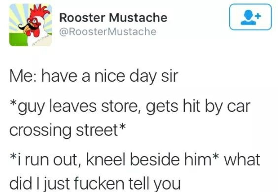 Text - Rooster Mustache @RoosterMustache Me: have a nice day sir *guy leaves store, gets hit by car crossing street* *i run out, kneel beside him* what did I just fucken tell you