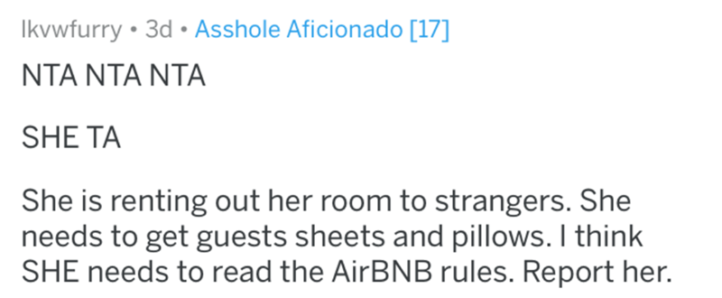 Text - Ikvwfurry • 3d • Asshole Aficionado [17] NTA NTA NTA SHE TA She is renting out her room to strangers. She needs to get guests sheets and pillows. I think SHE needs to read the AirBNB rules. Report her.