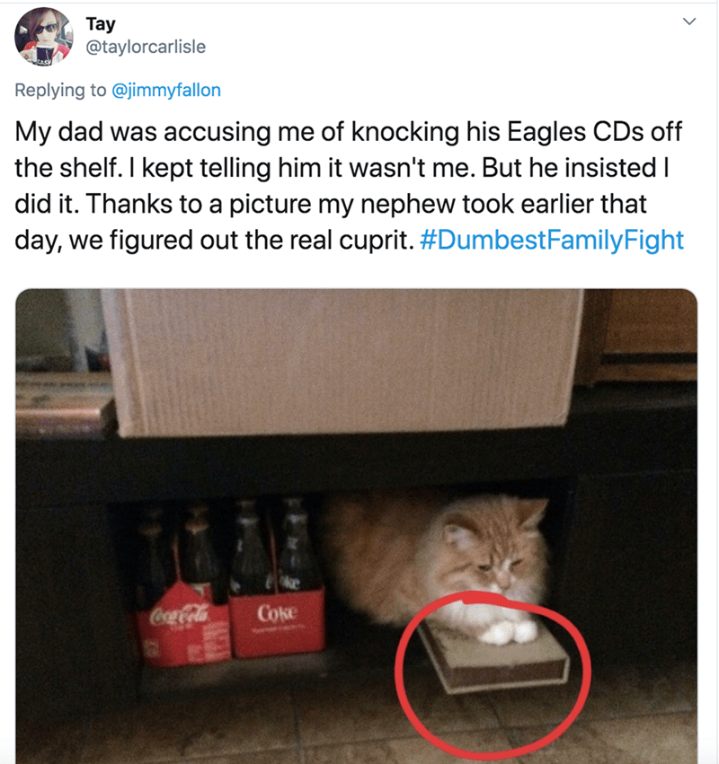 Cat - Tay @taylorcarlisle Replying to @jimmyfallon My dad was accusing me of knocking his Eagles CDs off the shelf. I kept telling him it wasn't me. But he insisted I did it. Thanks to a picture my nephew took earlier that day, we figured out the real cuprit. #DumbestFamilyFight Coca Cola Coke