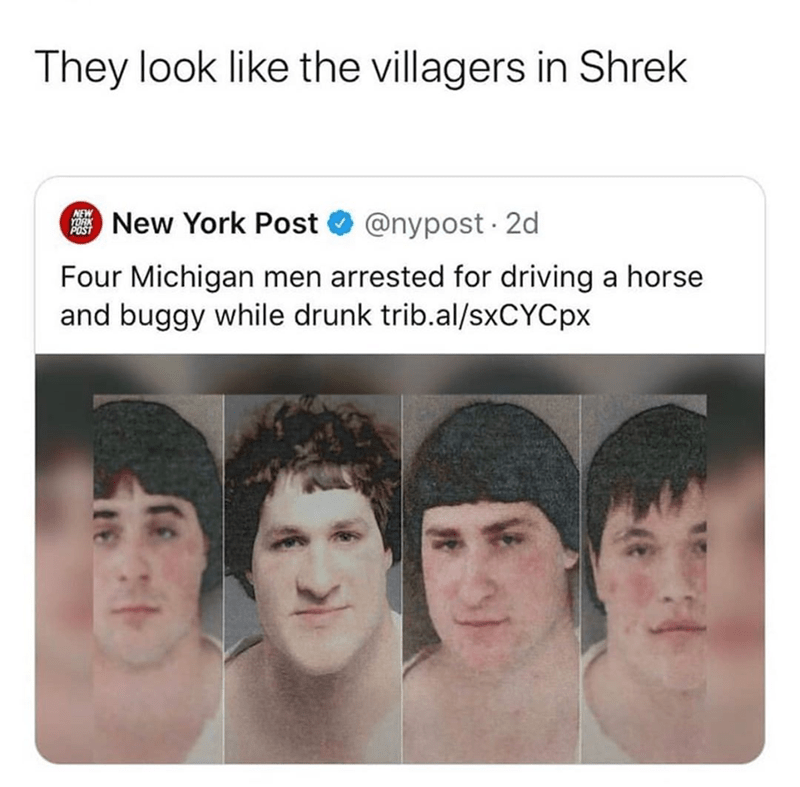 Funny meme, villagers, shrek, funny tweet about michigan guys who look like the villagers from shrek.