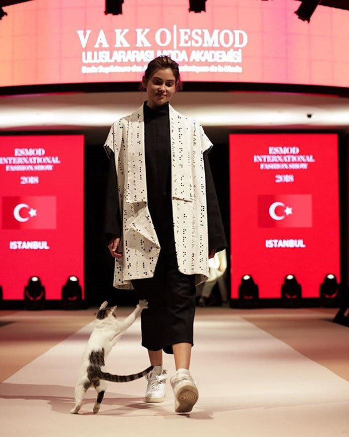 cat crashes fashion show