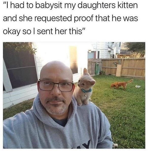 """People - """"I had to babysit my daughters kitten and she requested proof that he was okay so I sent her this"""""""