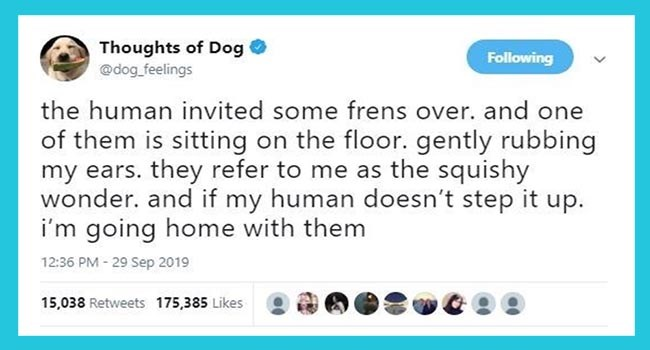 thoughts dog dogs tweet