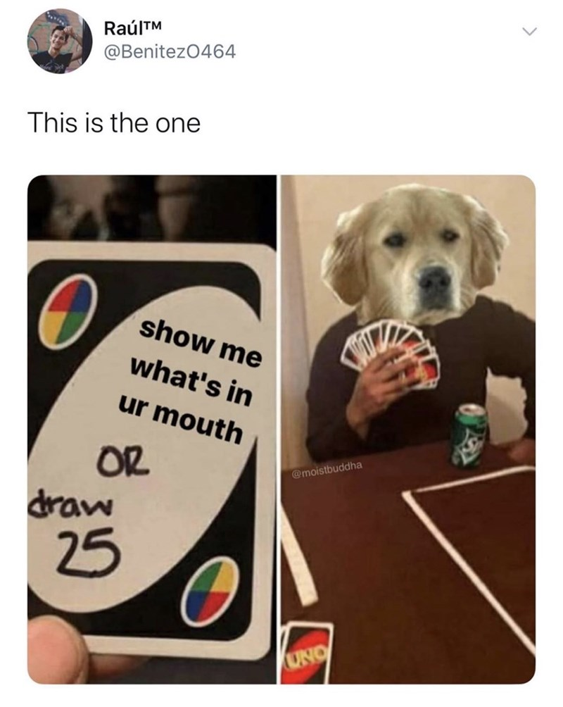 Dog - RaúlTM @Benitez0464 This is the one show me what's in ur mouth OR draw @moistbuddha 25 UNO
