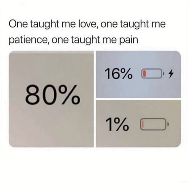 Text - One taught me love, one taught me patience, one taught me pain 16% 80%