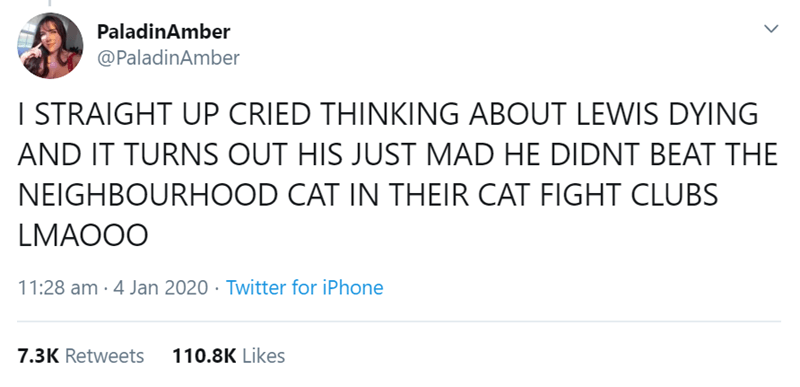 Text - PaladinAmber @PaladinAmber I STRAIGHT UP CRIED THINKING ABOUT LEWIS DYING AND IT TURNS OUT HIS JUST MAD HE DIDNT BEAT THE NEIGHBOURHOOD CAT IN THEIR CAT FIGHT CLUBS LMAO0O 11:28 am · 4 Jan 2020 · Twitter for iPhone 7.3K Retweets 110.8K Likes