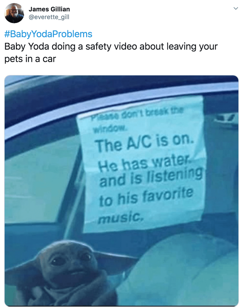 Text - James Gillian @everette_gill #BabyYodaProblems Baby Yoda doing a safety video about leaving your pets in a car Please don't break the window. The A/C is on. He has water and is listening to his favorite music.