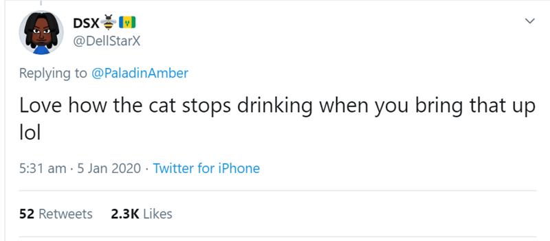 Text - DSX 비 @DellStarX Replying to @PaladinAmber Love how the cat stops drinking when you bring that up lol 5:31 am · 5 Jan 2020 · Twitter for iPhone 2.3K Likes 52 Retweets