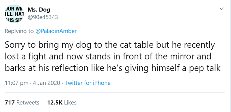 Text - JUR WI Ms. Dog ILL HAT 4IS SIT @90e45343 Replying to @PaladinAmber Sorry to bring my dog to the cat table but he recently lost a fight and now stands in front of the mirror and barks at his reflection like he's giving himself a pep talk 11:07 pm · 4 Jan 2020 · Twitter for iPhone 717 Retweets 12.5K Likes