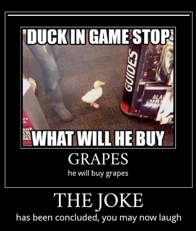 Font - DUCK IN GAME STOP ALA VE SR WHAT WILL HE BUY REC GRAPES he will buy grapes THE JOKE has been concluded, you may now laugh GUIDES