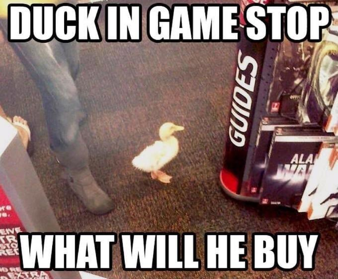 Photo caption - DUCK IN GAME STOP ALA we. EIVE TR WHAT WILL HE BUY REC D RE GUIDES