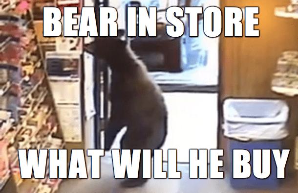 Internet meme - BEAR IN STORE WHAT WILL HÉ BUY