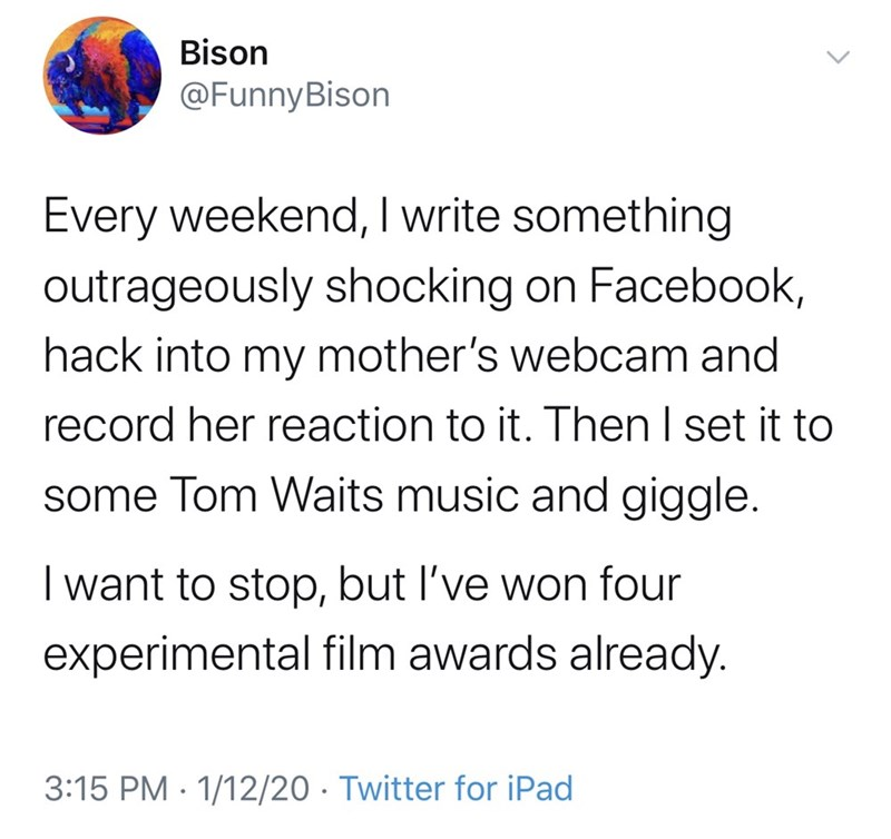 Text - Bison @FunnyBison Every weekend, I write something outrageously shocking on Facebook, hack into my mother's webcam and record her reaction to it. Then I set it to some Tom Waits music and giggle. I want to stop, but l've won four experimental film awards already. 3:15 PM · 1/12/20 · Twitter for iPad