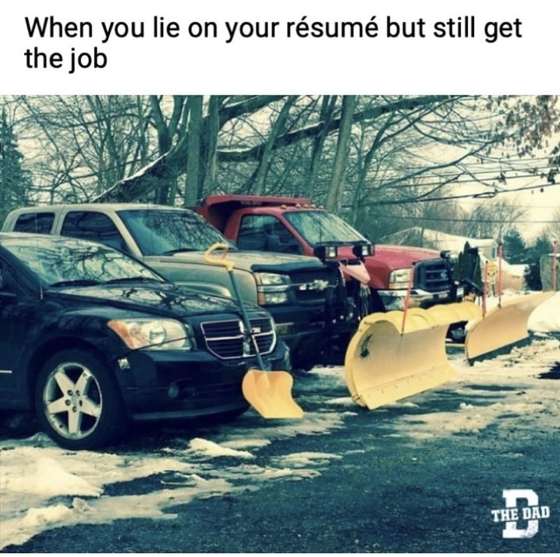 Motor vehicle - When you lie on your résumé but still get the job THE DAD