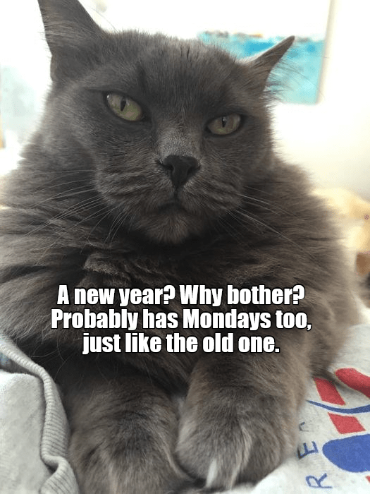Cat - A new year? Why bother? Probably has Mondays too, just like the old one. R.