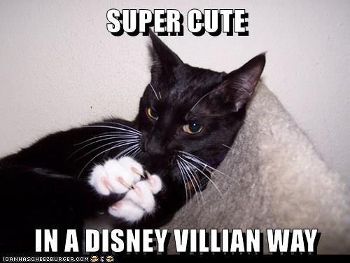 Cat - SUPER CUTE IN A DISNEY VILLIAN WAY IOANHASCHEEZEURGER.COM