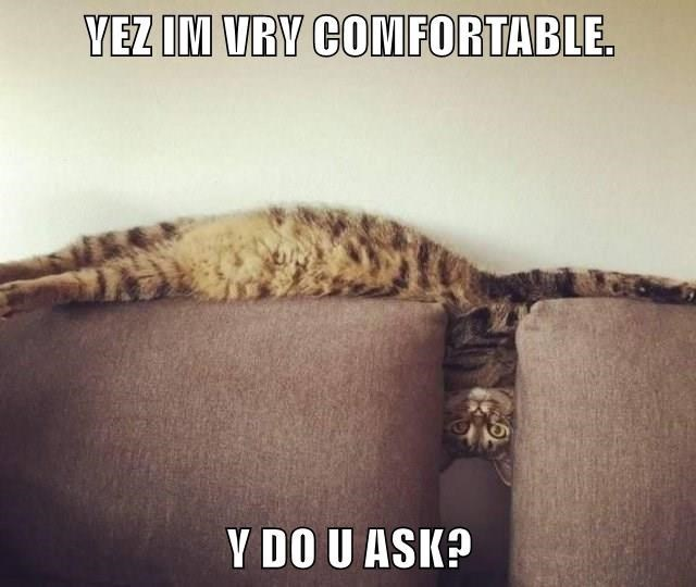 Text - VEZ IM VRY COMFORTABLE. Y DO U ASK?