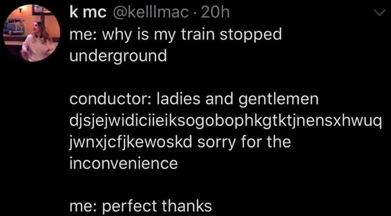 Text - k mc @kellmac 20h me: why is my train stopped underground conductor: ladies and gentlemen djsjejwidiciieiksogobophkgtktjnensxhwuq jwnxjcfjkewoskd sorry for the inconvenience me: perfect thanks