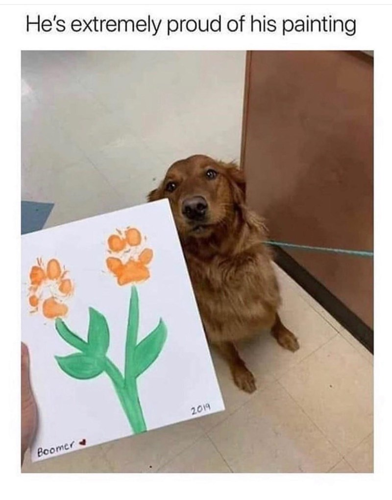 Dog - He's extremely proud of his painting 2019 Boomer