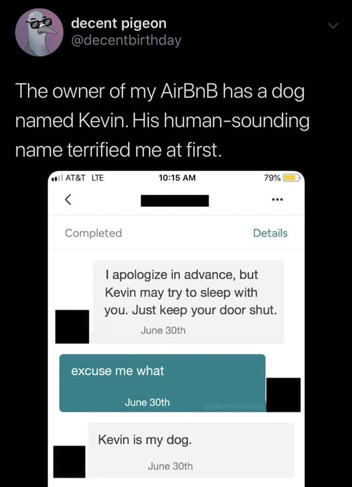 Text - decent pigeon @decentbirthday The owner of my AirBnB has a dog named Kevin. His human-sounding name terrified me at first. AT&T LTE 10:15 AM 79% Completed Details I apologize in advance, but Kevin may try to sleep with you. Just keep your door shut. June 30th excuse me what June 30th decentbithdny Kevin is my dog. June 30th