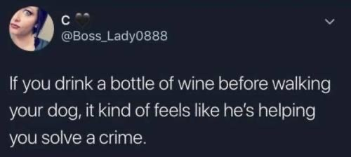 Text - @Boss Lady0888 If you drink a bottle of wine before walking your dog, it kind of feels like he's helping you solve a crime.