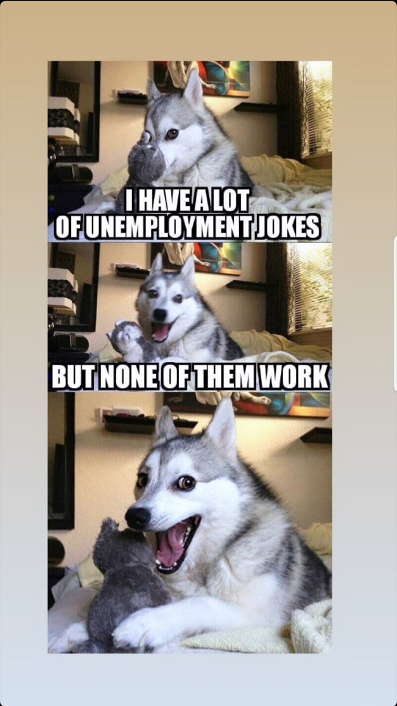 Mammal - I HAVE ALOT OF UNEMPLOYMENT JOKES BUT NONE OF THEM WORK