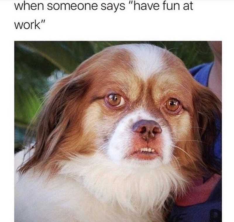 "Dog - when someone says ""have fun at work"""