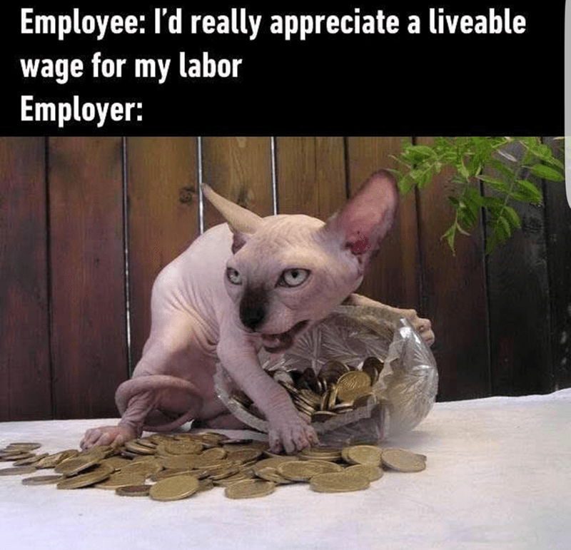 Cat - Employee: I'd really appreciate a liveable wage for my labor Employer: