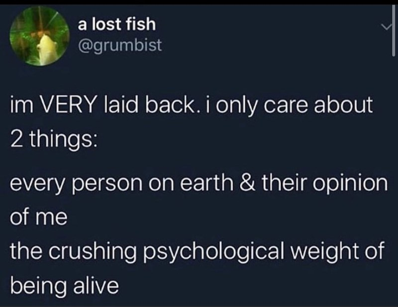 Text - a lost fish @grumbist im VERY laid back. i only care about 2 things: every person on earth & their opinion of me the crushing psychological weight of being alive