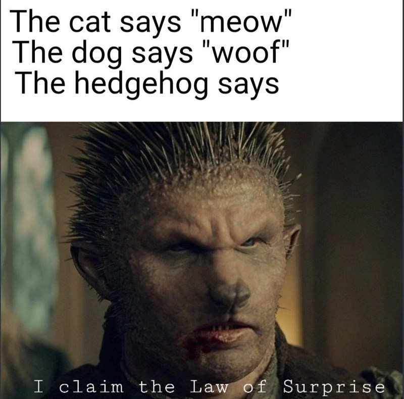 "Hair - The cat says ""meow"" The dog says ""woof"" The hedgehog says I claim the Law of Surprise"