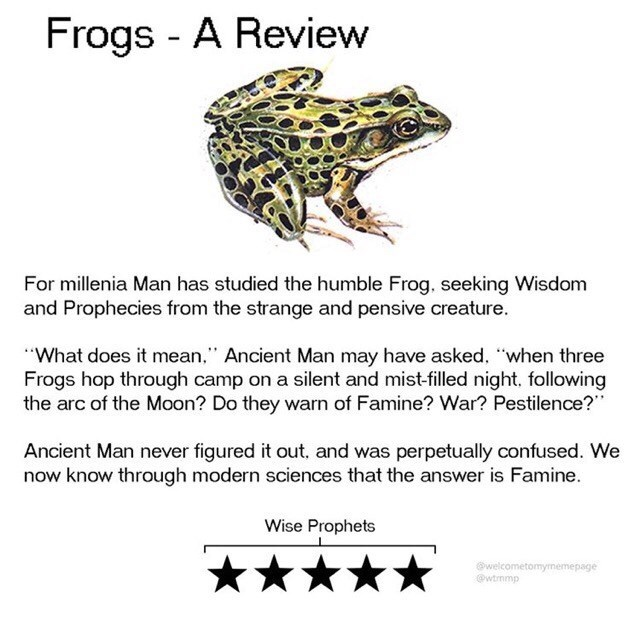 """Text - Frogs - A Review For millenia Man has studied the humble Frog, seeking Wisdom and Prophecies from the strange and pensive creature. """"What does it mean,"""" Ancient Man may have asked, """"when three Frogs hop through camp on a silent and mist-filled night, following the arc of the Moon? Do they warn of Famine? War? Pestilence?"""" Ancient Man never figured it out, and was perpetually confused. We now know through modern sciences that the answer is Famine. Wise Prophets @welcometomymemepage @wtrnmp"""