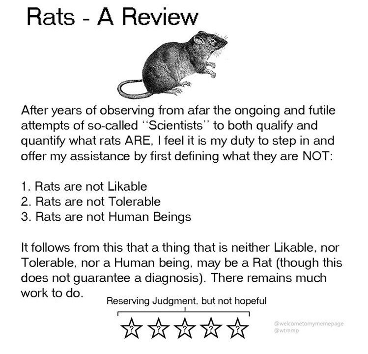 """Text - Rats - A Review years of observing from afar the ongoing and futile attempts of so-called """"Scientists"""" to both qualify and quantify what rats ARE, I feel it is my duty to step in and offer my assistance by first defining what they are NOT: After 1. Rats are not Likable 2. Rats are not Tolerable 3. Rats are not Human Beings It follows from this that a thing that is neither Likable, nor Tolerable, nor a Human being, may be a Rat (though this does not guarantee a diagnosis). There remains mu"""
