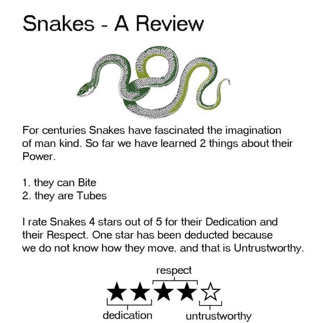 Text - Snakes - A Review For centuries Snakes have fascinated the imagination of man kind. So far we have learned 2 things about their Power. 1. they can Bite 2. they are Tubes I rate Snakes 4 stars out of 5 for their Dedication and their Respect. One star has been deducted because we do not know how they move, and that is Untrustworthy. respect dedication untrustworthy