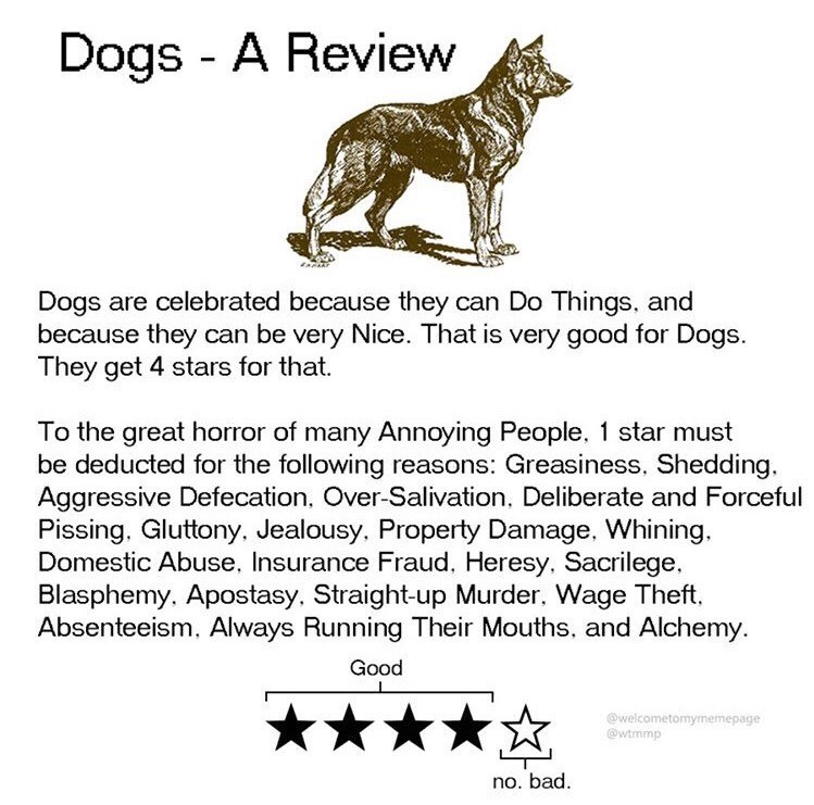 Text - Dogs - A Review Dogs are celebrated because they can Do Things, and because they can be very Nice. That is very good for Dogs. They get 4 stars for that. To the great horror of many Annoying People, 1 star must be deducted for the following reasons: Greasiness, Shedding, Aggressive Defecation, Over-Salivation, Deliberate and Forceful Pissing. Gluttony, Jealousy, Property Damage, Whining. Domestic Abuse, Insurance Fraud. Heresy, Sacrilege, Blasphemy. Apostasy, Straight-up Murder, Wage Thef