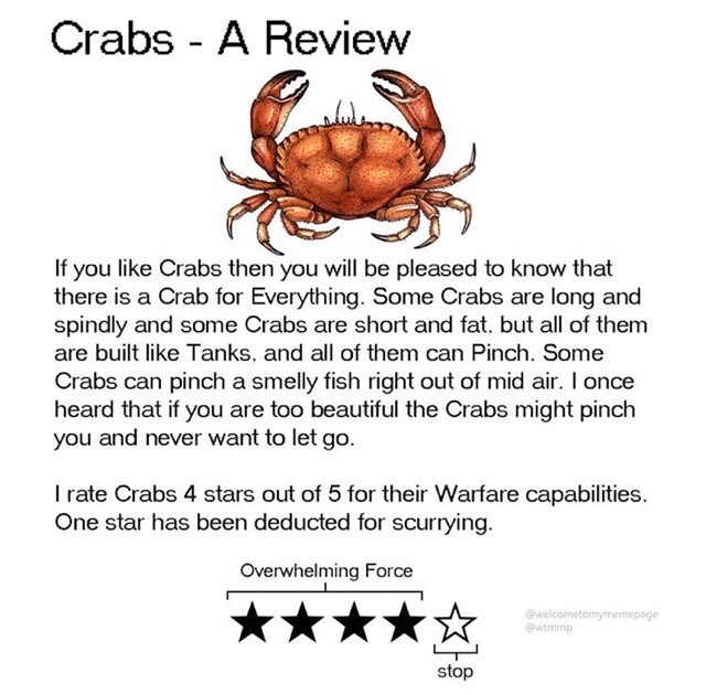 Text - Crabs - A Review If you like Crabs then you will be pleased to know that there is a Crab for Everything. Some Crabs are long and spindly and some Crabs are short and fat, but all of them are built like Tanks, and all of them can Pinch. Some Crabs can pinch a smelly fish right out of mid air. I once heard that if you are too beautiful the Crabs might pinch you and never want to let go. I rate Crabs 4 stars out of 5 for their Warfare capabilities. One star has been deducted for scurrying. O