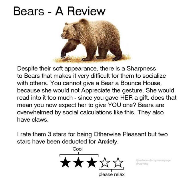 Grizzly bear - Bears - A Review Despite their soft appearance, there is a Sharpness to Bears that makes it very difficult for them to socialize with others. You cannot give a Bear a Bounce House. because she would not Appreciate the gesture. She would read into it too much since you gave HER a gift, does that mean you now expect her to give YOU one? Bears are overwhelmed by social calculations like this. They also have claws. I rate them 3 stars for being Otherwise Pleasant but two stars have be