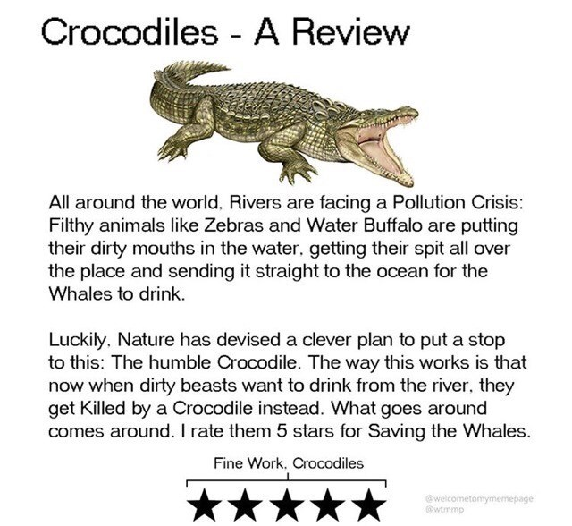 Text - Crocodiles - A Review All around the world. Rivers are facing a Pollution Crisis: Filthy animals like Zebras and Water Buffalo are putting their dirty mouths in the water, getting their spit all over the place and sending it straight to the ocean for the Whales to drink. Luckily, Nature has devised a clever plan to put a stop to this: The humble Crocodile. The way this works is that now when dirty beasts want to drink from the river, they get Killed by a Crocodile instead. What goes aroun