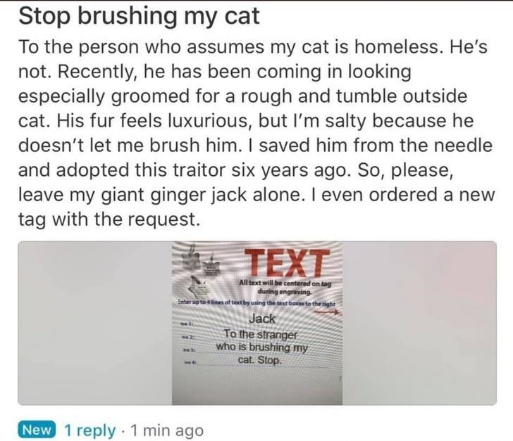 Text - Stop brushing my cat To the person who assumes my cat is homeless. He's not. Recently, he has been coming in looking especially groomed for a rough and tumble outside cat. His fur feels luxurious, but I'm salty because he doesn't let me brush him. I saved him from the needle and adopted this traitor six years ago. So, please, leave my giant ginger jack alone. I even ordered a new tag with the request. TEXT All text will be centered on tag during engraving Enter up to 4 lines of textby uni