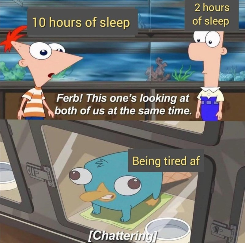 Cartoon - 2 hours 10 hours of sleep of sleep 3. Ferb! This one's looking at both of us at the same time. Being tired af [Chattering