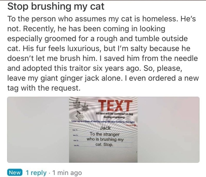 Text - Stop brushing my cat To the person who assumes my cat is homeless. He's not. Recently, he has been coming in looking especially groomed for a rough and tumble outside cat. His fur feels luxurious, but l'm salty because he doesn't let me brush him. I saved him from the needle and adopted this traitor six years ago. So, please, leave my giant ginger jack alone. I even ordered a new tag with the request. TEXT All text will be centered on tag during engraving. Enter up to 4lines of text by us