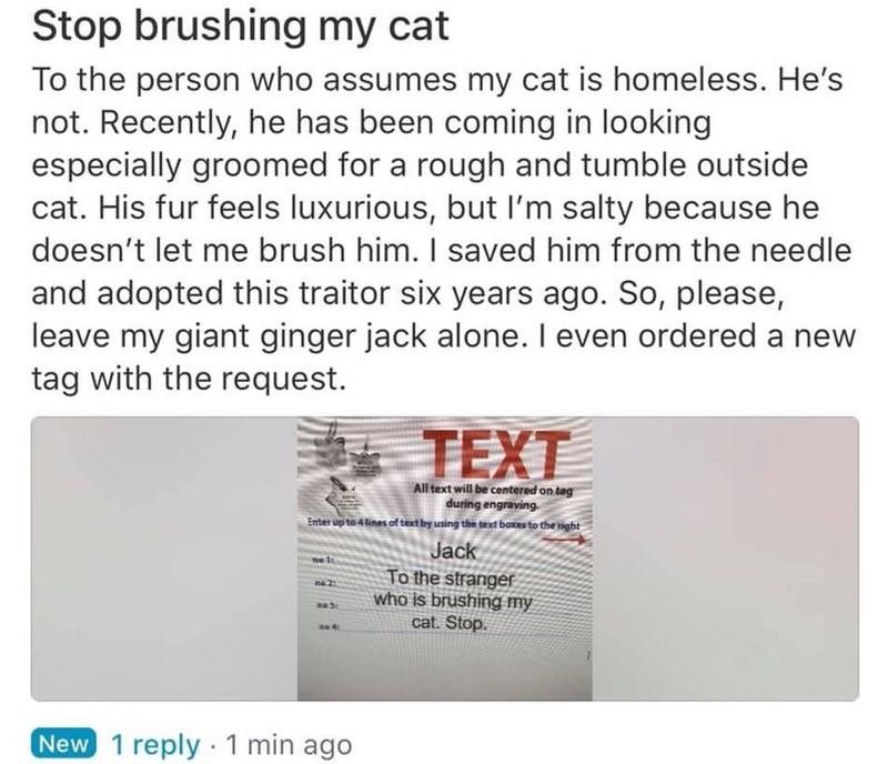 Text - Stop brushing my cat To the person who assumes my cat is homeless. He's not. Recently, he has been coming in looking especially groomed for a rough and tumble outside cat. His fur feels luxurious, but l'm salty because he doesn't let me brush him. I saved him from the needle and adopted this traitor six years ago. So, please, leave my giant ginger jack alone. I even ordered a new tag with the request. TEXT All text will be centered on tag during engraving. Enter up to 4 lines of teat by u
