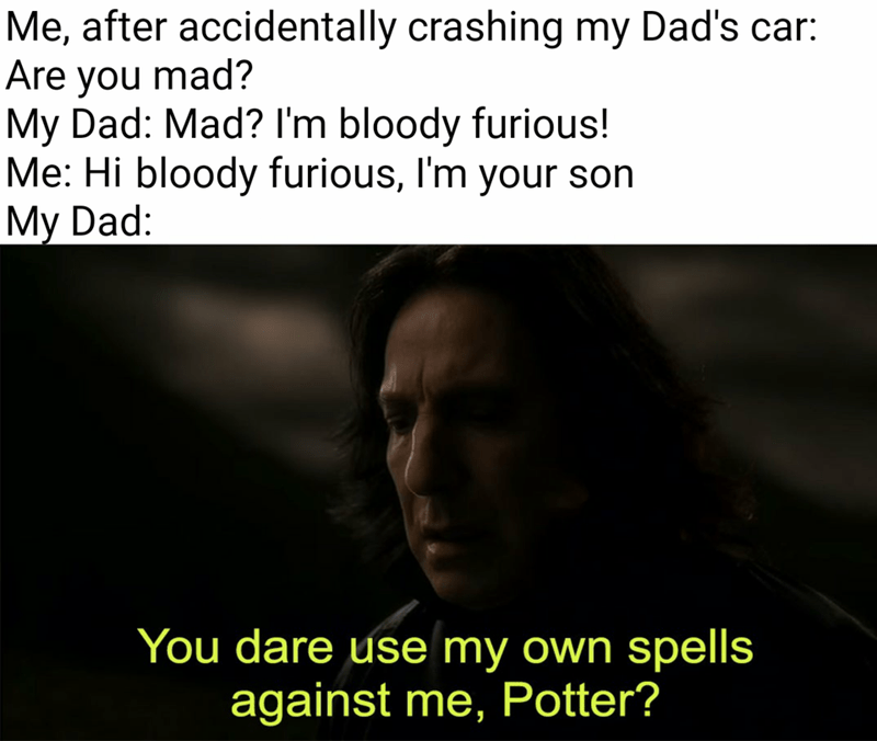 Text - Me, after accidentally crashing my Dad's car: Are you mad? My Dad: Mad? I'm bloody furious! Me: Hi bloody furious, I'm your son My Dad: You dare use my own spells against me, Potter?