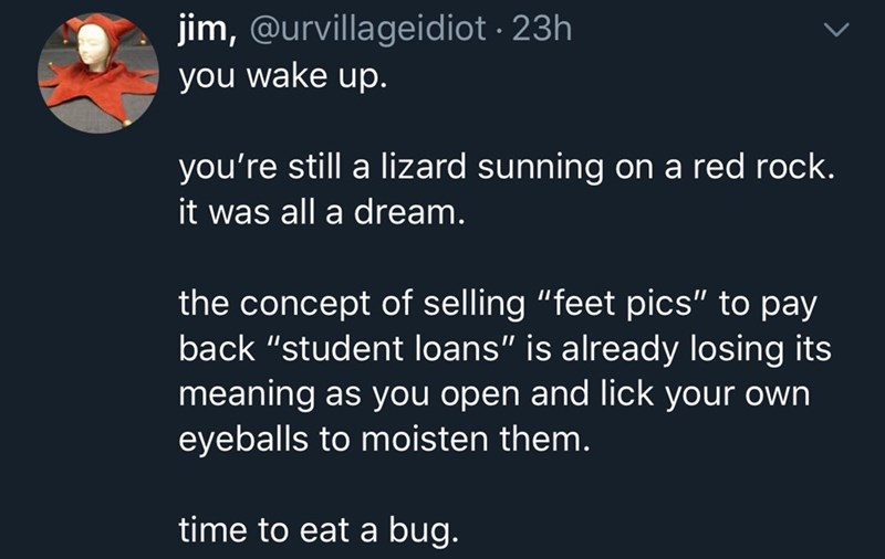 "Text - jim, @urvillageidiot · 23h you wake up. you're still a lizard sunning on a red rock. it was all a dream. the concept of selling ""feet pics"" to pay back ""student loans"" is already losing its meaning as you open and lick your own eyeballs to moisten them. time to eat a bug."