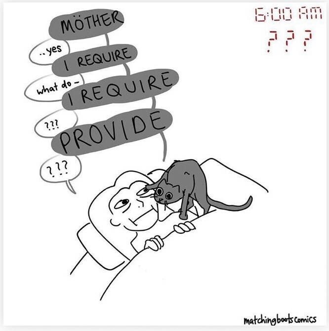 Text - MÖTHER 6:00 AM yes I REQUIRE ??? what do - I REQUIRE ??? PROVIDE ??? matchingboots comics 17..