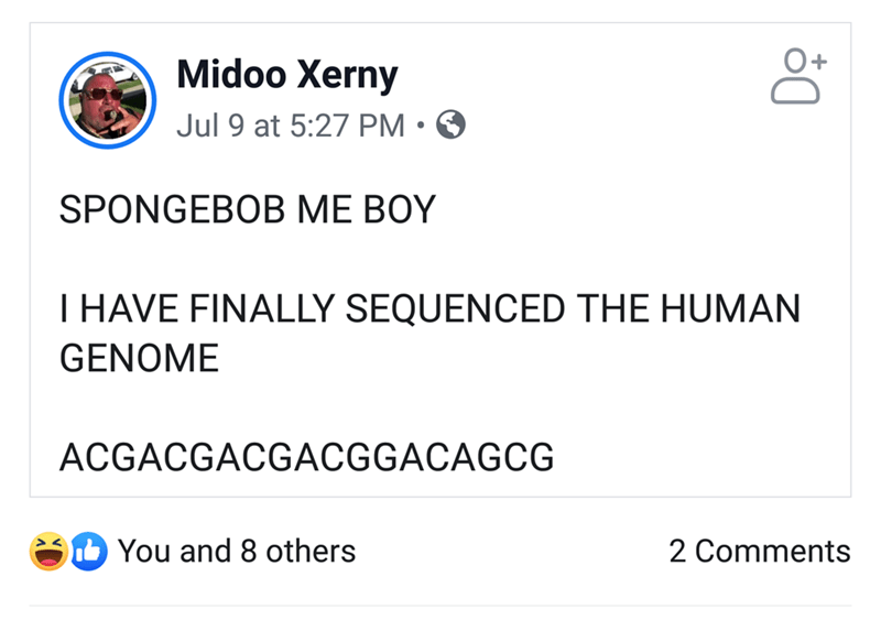 Text - Midoo Xerny Jul 9 at 5:27 PM • O SPONGEBOB ME BOY T HAVE FINALLY SEQUENCED THE HUMAN GENOME ACGACGACGACGGACAGCG You and 8 others 2 Comments