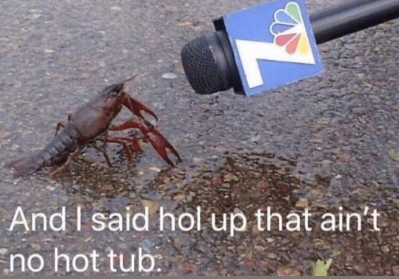Crayfish - And I said hol up that ain't no hot tub.
