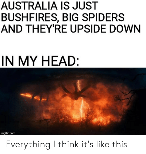 Heat - AUSTRALIA IS JUST BUSHFIRES, BIG SPIDERS AND THEY'RE UPSIDE DOWN IN MY HEAD: imgflip.com Everything I think it's like this