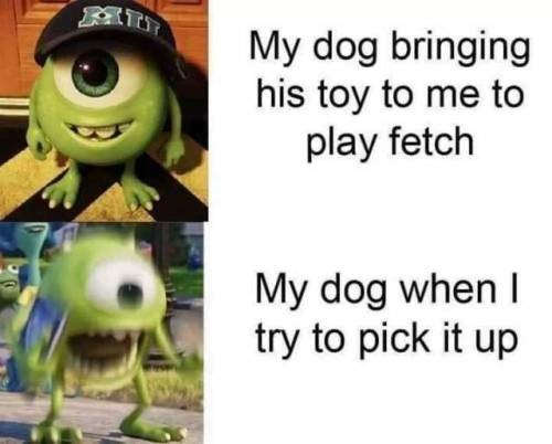 Cartoon - My dog bringing his toy to me to play fetch My dog when I try to pick it up