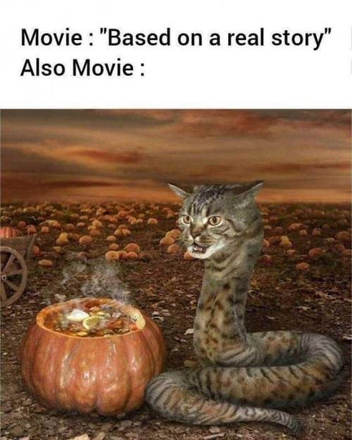 """Cat - Movie : """"Based on a real story"""" Also Movie :"""